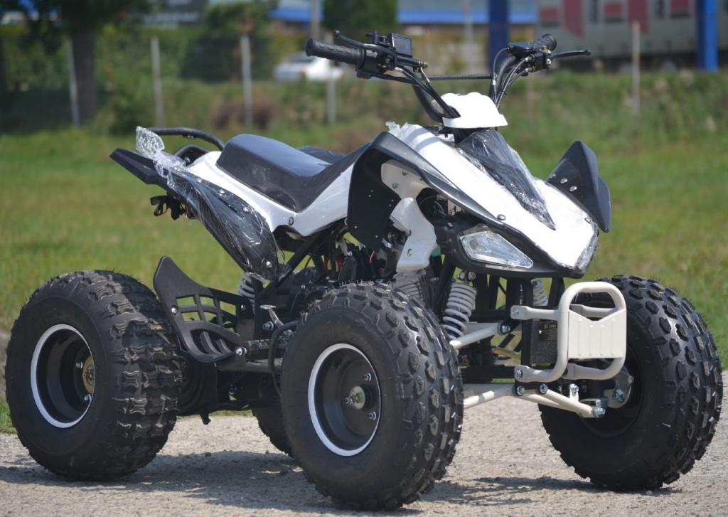 Yamaha atv speedy raptor 125cc shanker kxd for Atv yamaha raptor 125cc